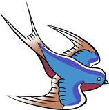 Swallow Bird Royalty Free Stock Photos