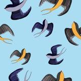 Swallow bird illustration. Swallow bird. Hand drawn  stock illustration. Seamless background pattern Royalty Free Stock Images