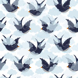 Swallow and clouds pattern Stock Image