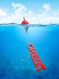 Swallow credit bait stock photos