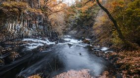 Swallow Falls at Autumn in Snowdonia National Park, UK stock footage