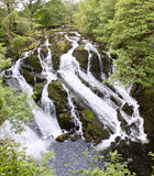 Swallow Falls near Betws-Y-Coed Royalty Free Stock Photography