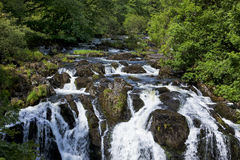 Swallow Falls on river Llugwy Stock Images
