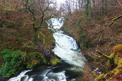 Swallow Falls, Wales, UK Royalty Free Stock Images