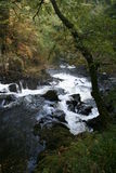 Swallow Falls, waterfall in Snowdonia, North Wales Royalty Free Stock Photography