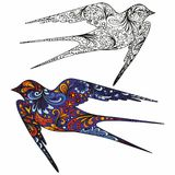 Swallow. Hand drawing. Colorful vector illustration and outline. Decorative pattern for design Stock Photo