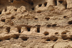 Swallow nests on sandy cliff. Rows of swallow nests on sandy cliff Stock Photography