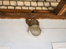Swallow's nest on the wall. Birds Nest on a person's home Royalty Free Stock Photos
