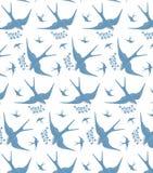 Swallows Stock Photo