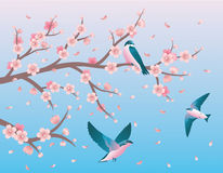 Swallows. stock illustration