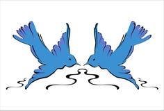 Swallows dell'azzurro - vettore immagini stock