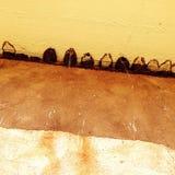 Swallows nests Royalty Free Stock Photos