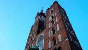 The swallows at the St Mary`s Church, Krakow, Poland. The swallows fly around the tall Gothic bell towers of St Mary Basilica with a dark blue evening sky on stock video footage