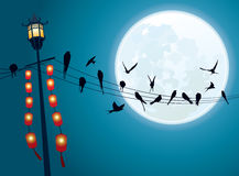 Swallows on the string with Full moon background Royalty Free Stock Photos
