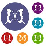 Swallowtail butterfly icons set Stock Photo