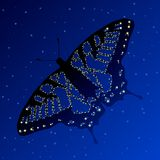 Swallowtail constellation Royalty Free Stock Images