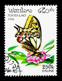 Swallowtail (Papilio machaon),动物区系serie,大约1996年 库存照片