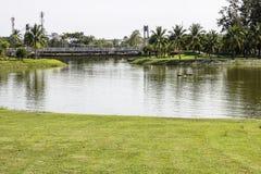 Swam park Royalty Free Stock Image