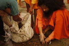 Swamiji Stock Image
