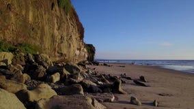 SWAMIS spuma e scene Encinitas California della spiaggia archivi video