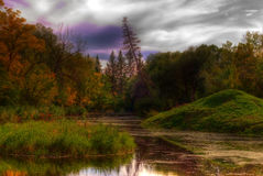 Swamp. A small swamp shot as a high dynamic range picture Stock Photography