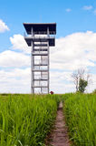Swamp area and lookout tower Royalty Free Stock Image