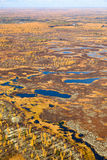 Swamp in autumn, top view Royalty Free Stock Images