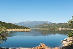 Swamp DARNIUS-BOADELLA (Girona) Stock Photography