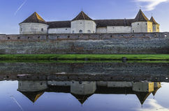 Swamp fortress mirror Stock Image