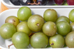 Swamp Grapes Stock Image
