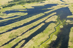 Swamp Kopački Rit  from the air Royalty Free Stock Images