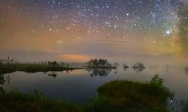 Swamp in the night stock photography