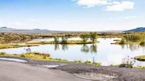 Swamp in rift valley in Thingvellir national park. Travel to Iceland - swamp in rift valley in Thingvellir national park in september Stock Photos