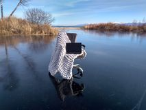 Swamp chair stock photos