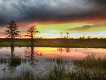 swamp sunset and ripples in the water Stock Photography