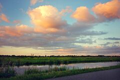 Swamp Surrounded With Green Grasses Near Pathway during Golden Hour Royalty Free Stock Image