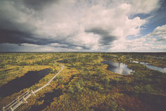 Swamp view with lakes and footpath Stock Image