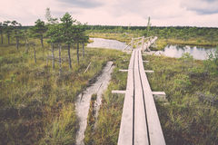 Swamp view with lakes and footpath. Vintage. Stock Photography