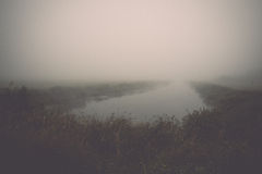 Swamp view with lakes and footpath. Vintage. Royalty Free Stock Photography
