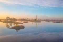 Swamp Yelnya, Belarus stock photo