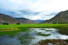The swampland of tibet. The scene of tibet .looks very beautiful Stock Photo