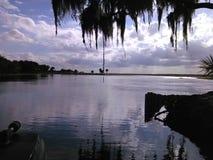 Swamplands Флориды стоковые изображения