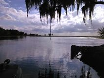 Swamplands de la Florida imagenes de archivo