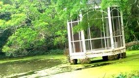 swampy Royalty-vrije Stock Afbeelding