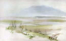 Swampy landscape Stock Photos