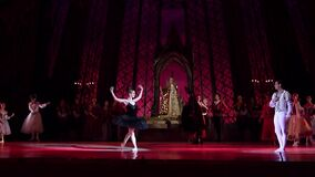 Swan湖芭蕾 股票录像
