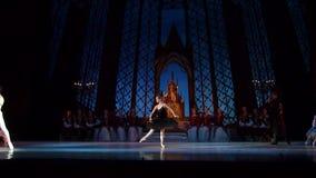Swan湖芭蕾 影视素材