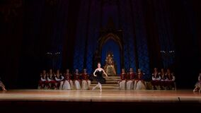 Swan湖芭蕾 股票视频