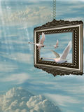 Swan. Fantasy Frame in the sky with Swan Royalty Free Stock Photos