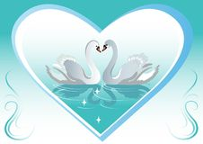 Free Swan Backgrounds Stock Photos - 12060773